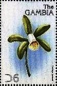 Stamp, Cattleya forbesii, Gambia,  , Flowers, Orchids
