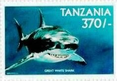 Stamp, Carcharodon carcharias, Tanzania,  , Animals (Fauna), Fishes, Sea Life, Sharks