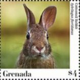 Stamp, Eastern cottontail, Grenada,