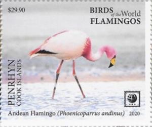 Stamp, Andean Flamingo (Phoenicoparrus andinus), Penrhyn,  , Animals (Fauna), Birds, Flamingos