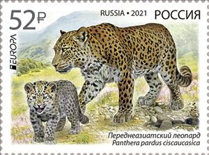 The National Endangered Wildlife will go into postal circulation in the issue upon program Europe