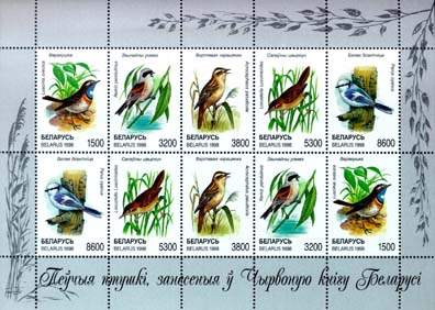 Sheetlet Songbirds listed in the Red Book of Belarus