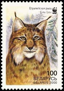 Stamp European Lynx (view 1), WWF