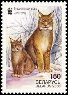 Stamp European Lynx (view 3), WWF