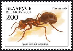 Stamp Red forest ant