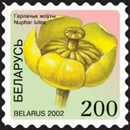 Definitive stamp Yellow Water-lily (self-adhesive)