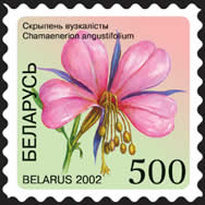 Definitive stamp Willow-herb (self-adhesive)