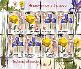 Sheetlet Rare flowers of Belarus (2 stamps)
