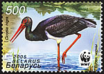 Stamp Black stork on water