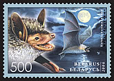 Stamp Bats of Belarus – Pond bat