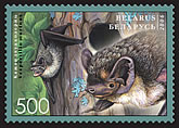 Stamp Bats of Belarus – Parti-colored bat