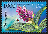 Stamp Orchids of Belarus – Western Marsh-orchid