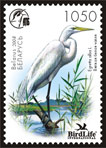 Stamp A bird of the year – White heron