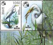 Stamp A bird of the year – White heron+1 coupon