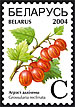 Definite stamp Berries – Gooseberries