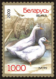 Stamp Poultry – Ducks