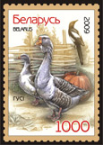 Stamp Poultry – Geese