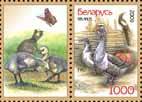 Stamp Poultry – Geese + 1 coupon