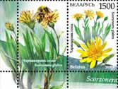 Stamp Endangered plants of Belarus – Scorzonera+1 coupon