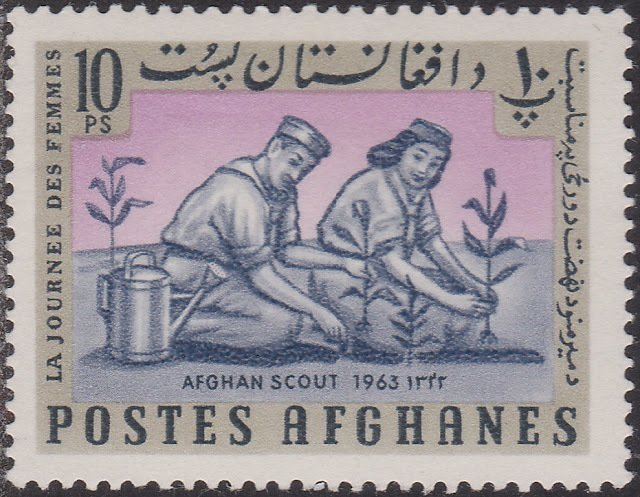 Scouts plant trees