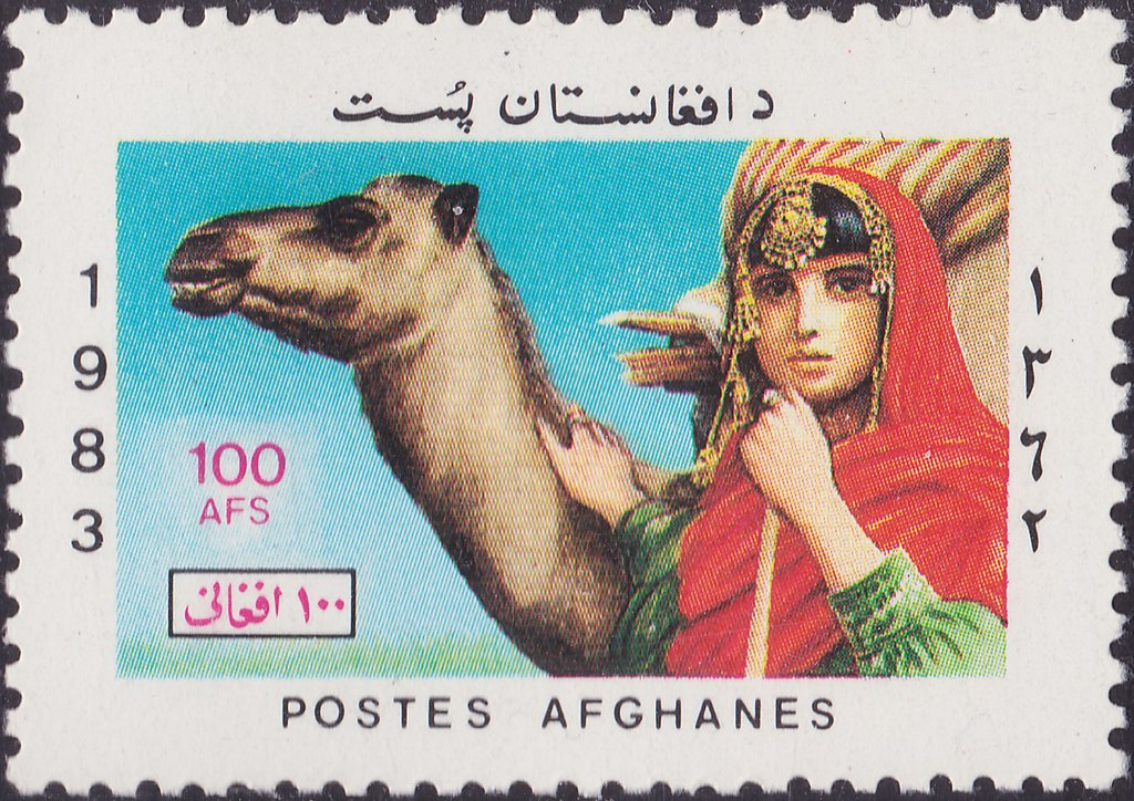 Woman with Dromedary (Camelus dromedarius)