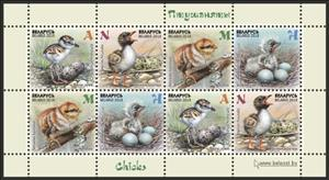 Children philately. Chicks