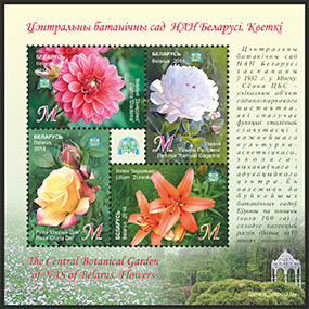 The Central Botanical Garden of NAS of Belarus. Flowers