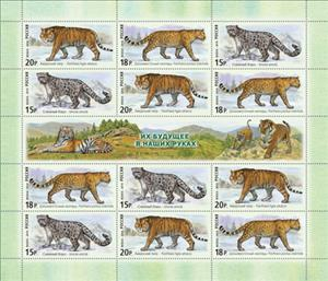 The Fauna of Russia. Wild Cats