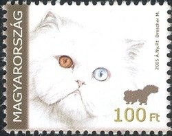For Youth 2005 - Persian cat