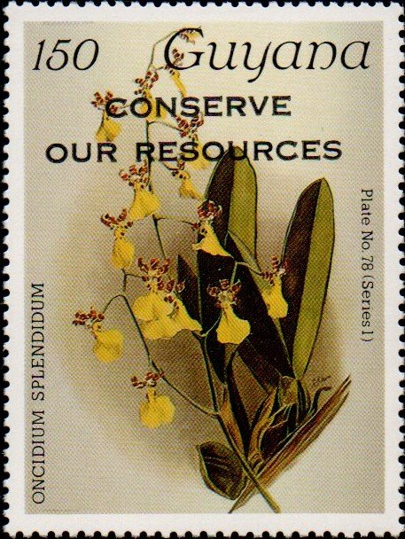 """Conserve Our Resources"" on 150c Plate No. 78 (series 1)"