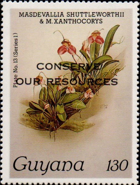 """Conserve Our Resources"" on 130c Plate No. 13 (series 1)"