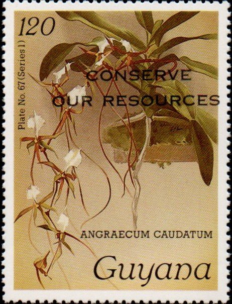"""Conserve Our Resources"" on 120c Plate No. 67 (series 1)"