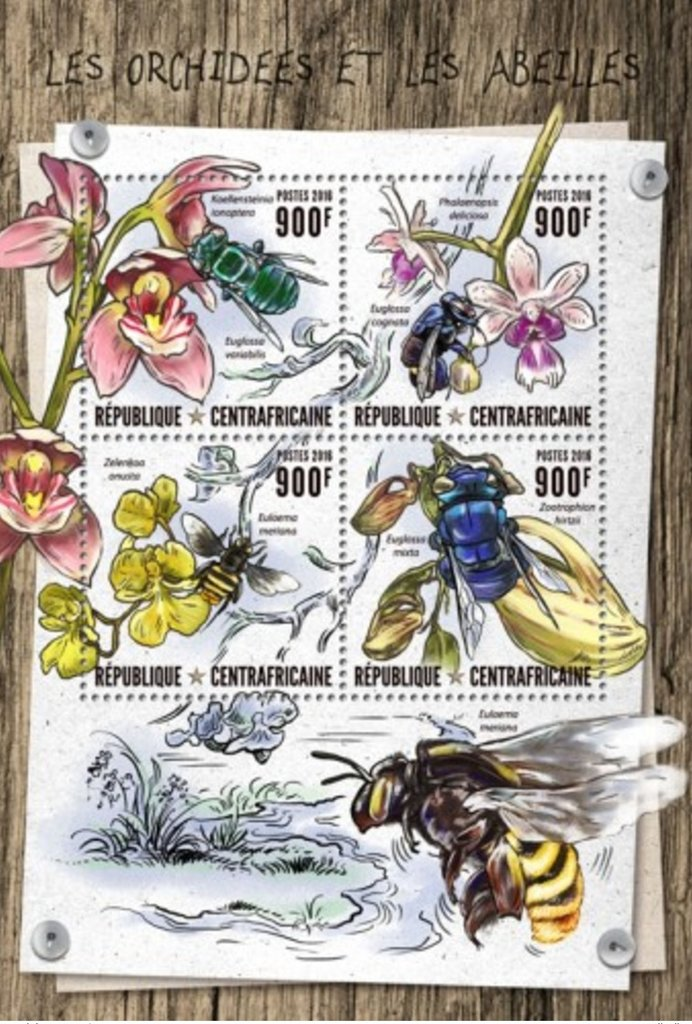 Orchids and Bees