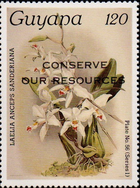 """Conserve Our Resources"" on 120c Plate No. 56 (series 1)"