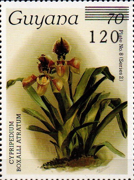 120 on 70c Plate No. 8 (series 2)