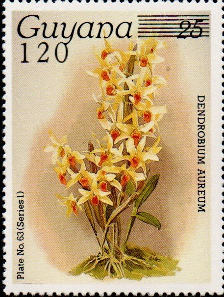 120 on 25c Plate No. 63 (series 1)