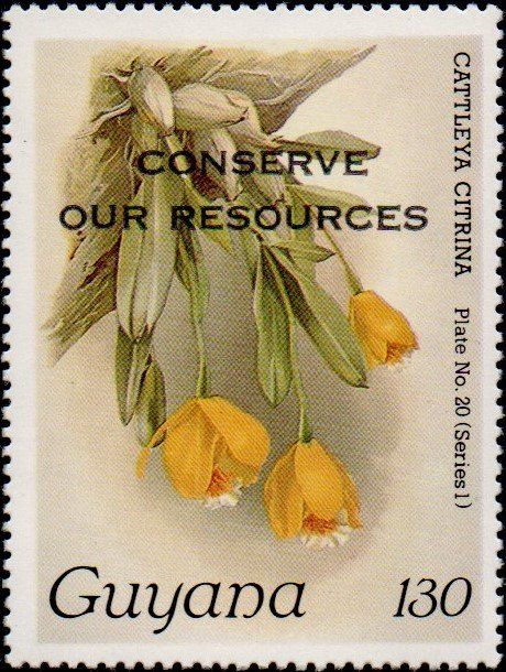 """Conserve Our Resources"" on 130c Plate No. 20 (series 1)"