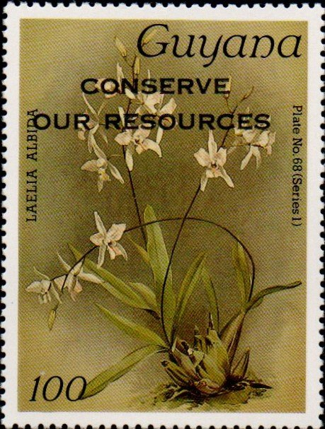 """Conserve Our Resources"" on 100c Plate No. 68 (series 1)"