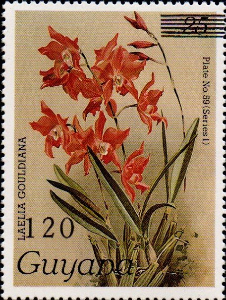 120 on 25c Plate No. 59 (series 1)