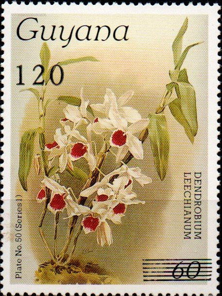 120 on 60c Plate No. 50 (series 1)