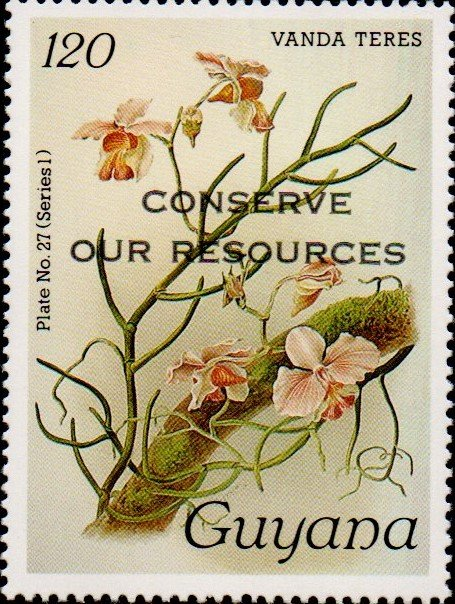 """Conserve Our Resources"" on 120c Plate No. 27 (series 1)"