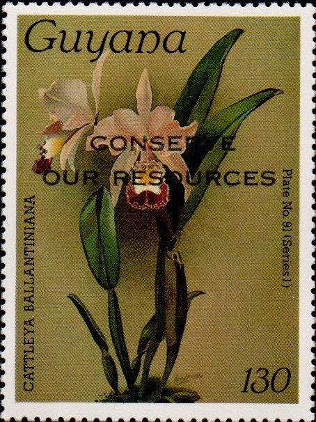 """Conserve Our Resources"" on 130c Plate No. 91 (series 1)"