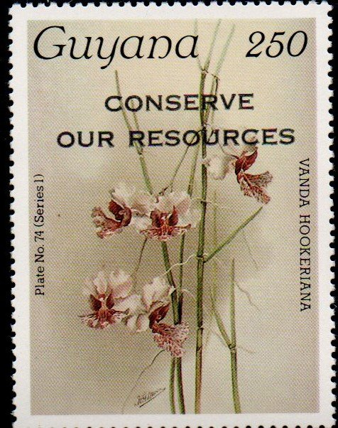 """Conserve Our Resources"" on 250c Plate No. 74 (series 1)"