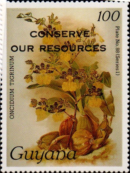 """Conserve Our Resources"" on 100c Plate No. 88 (series 1)"