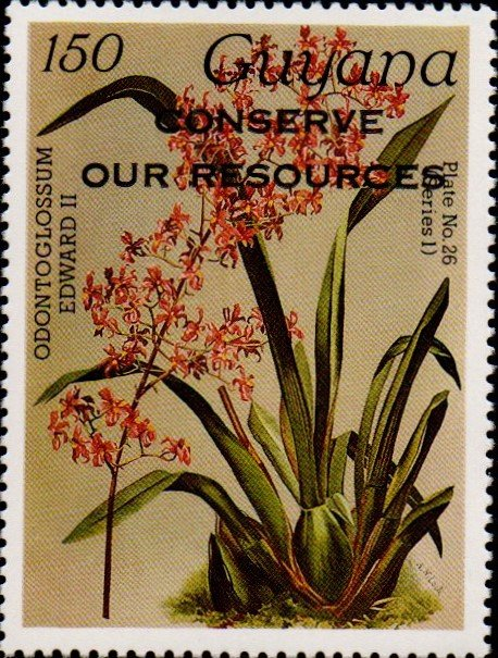"""Conserve Our Resources"" on 150c Plate No. 26 (series 1)"