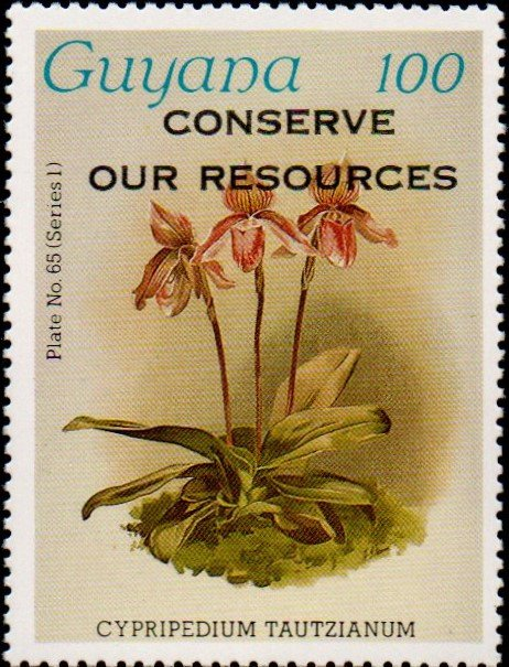 """Conserve Our Resources"" on 100c Plate No. 65 (series 1)"