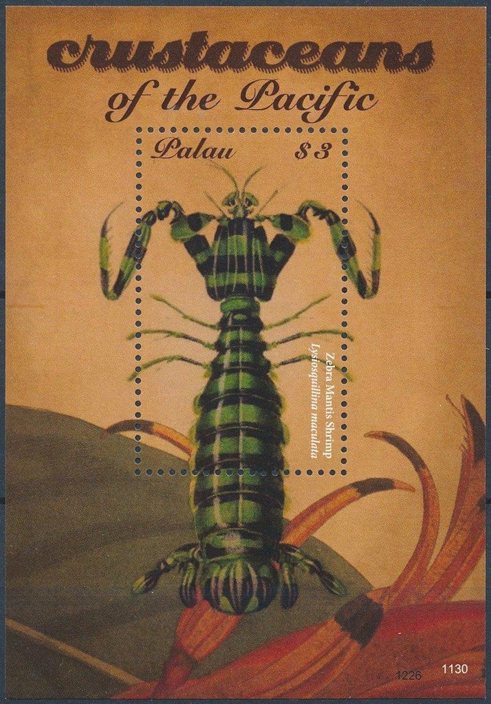 Crustaceans of the Pacific