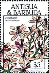 Stamp, Chinaberry, Antigua and Barbuda,  , Flowers