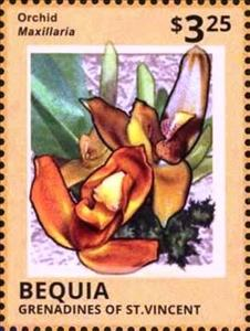 Stamp, Maxillaria, Saint Vincent Grenadines,  , Flowers, Orchids, Plants (Flora)
